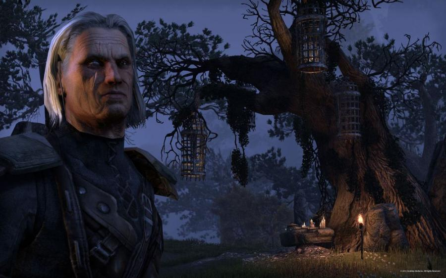 The Elder Scrolls Online - Tamriel Unlimited Screenshot 5