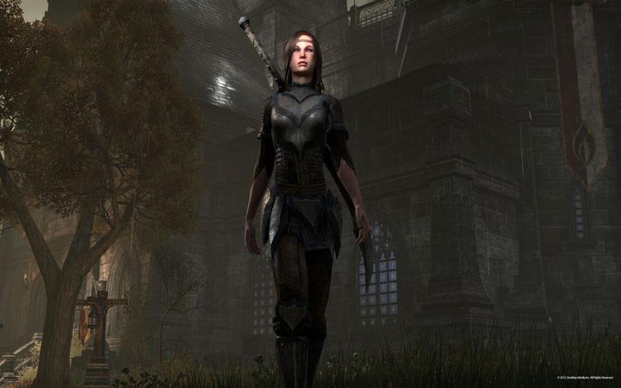 The Elder Scrolls Online - Tamriel Unlimited Screenshot 9